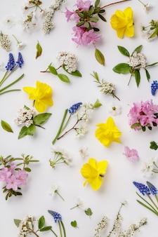 Patrón floral con flores de primavera y hojas sobre fondo blanco.