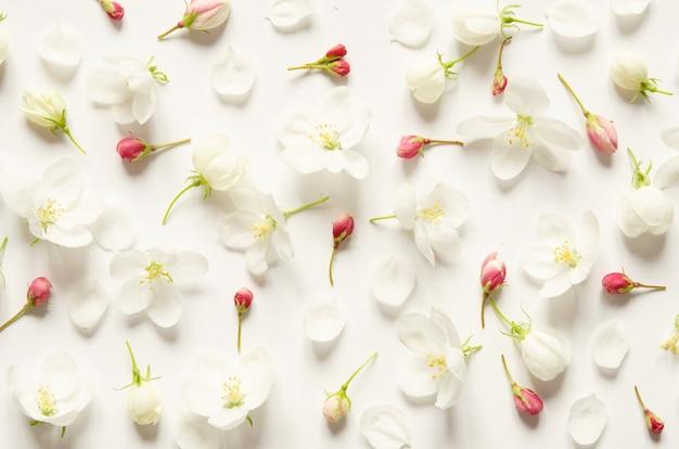 Patrón floral con flores rosas y blancas sobre fondo blanco.