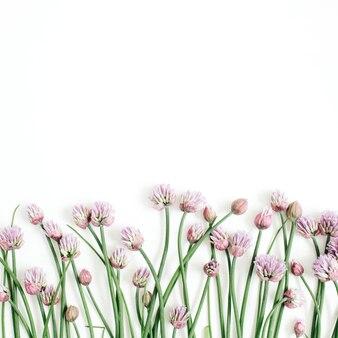 Patrón floral con flores silvestres, hojas verdes, ramas en blanco