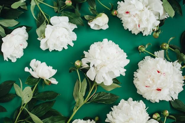 Patrón floral hecho de flores de peonía blanca, hojas verdes, ramas en verde
