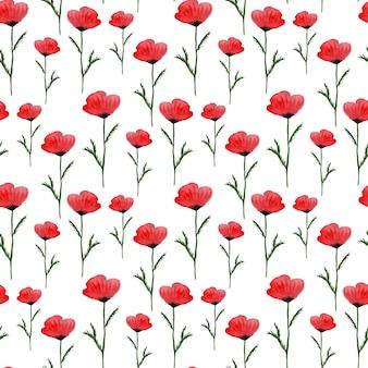 Patrón floral transparente acuarela
