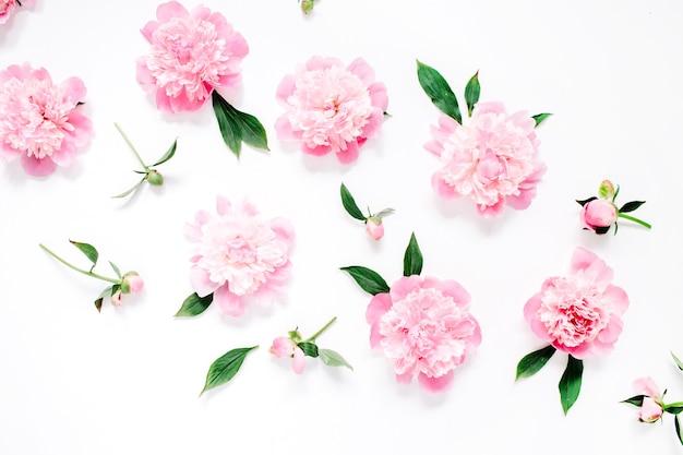 Patrón de flores de peonía rosa, ramas, hojas y pétalos en blanco