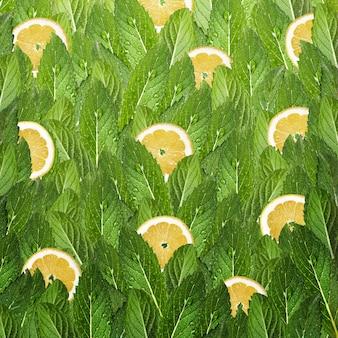 Patrón de hojas de menta y rodajas de limón.