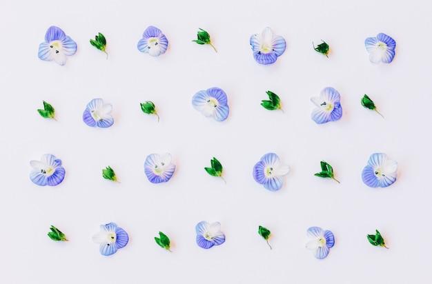 Patrón con hojas verdes y pétalos de flores azules.
