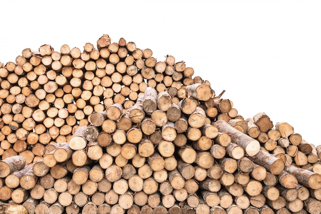 Patrón de madera de primer plano en la pila de madera vieja aislada sobre fondo blanco
