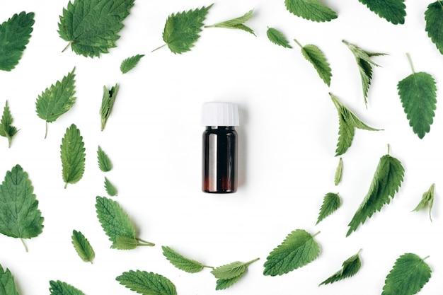 Sin patrón de ortiga fresca, menta y botella de aceite esencial en