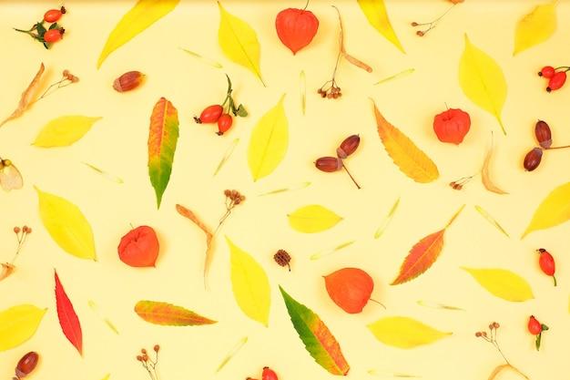 Patrón de otoño hojas caídas, bellotas.