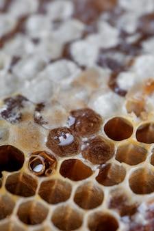 Patrón de primer plano honyecomb