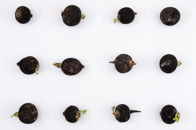 Patrón de rábano negro