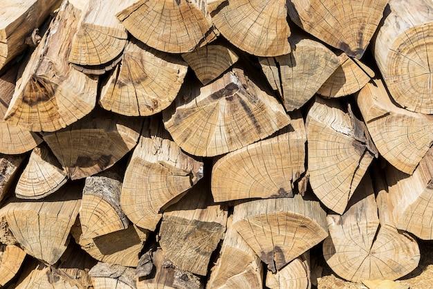 Patrón de la sección de madera y textura.
