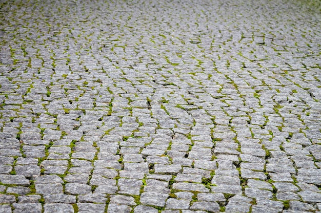 Pavimento de adoquines en bruto con musgo