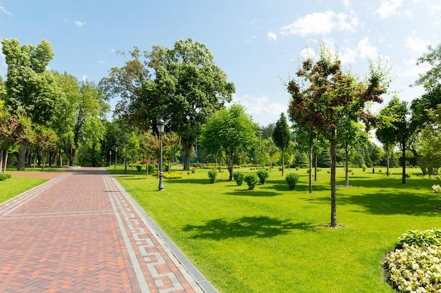 Pavimento en el parque