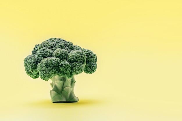 Pedazo de brócoli sobre fondo amarillo como el árbol.