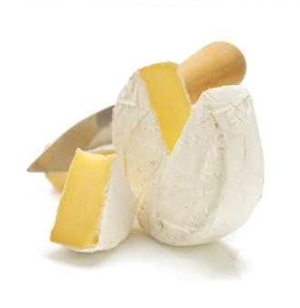 Pedazo de queso queso aislado en blanco