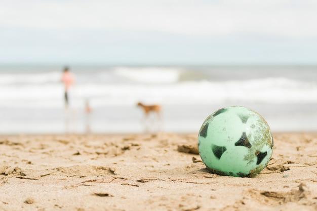 Pelota en la costa de arena y persona con perro cerca del agua.