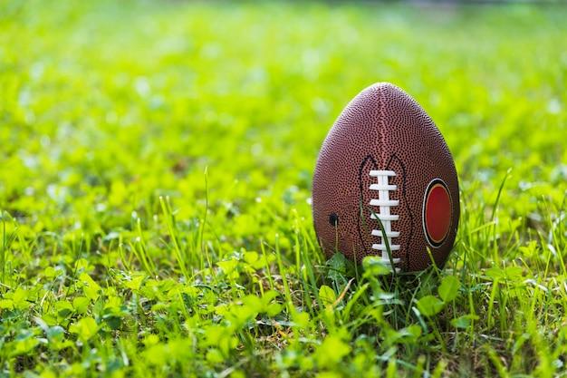 Pelota de rugby en la hierba verde