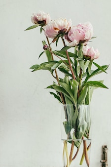 Peonías de flor rosa