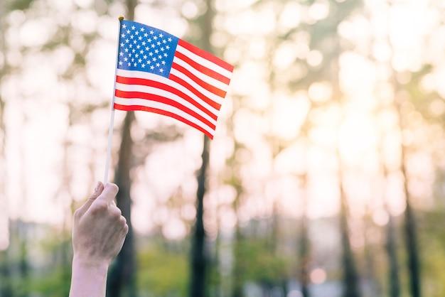 Pequeña bandera americana contra parque soleado