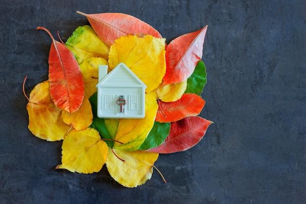 Pequeña casa de juguete entre coloridas hojas de otoño.