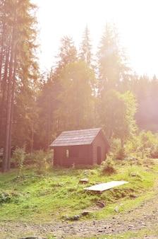 Pequeña casa natural, construida en madera. el edificio está situado en el bosque.