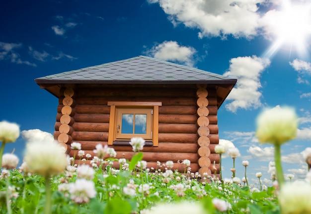 Pequeña casa en prado de flores