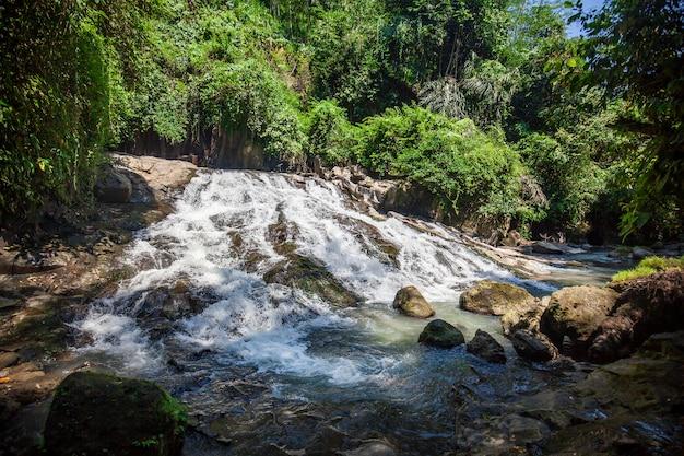 Pequeña cascada y árboles verdes en bali