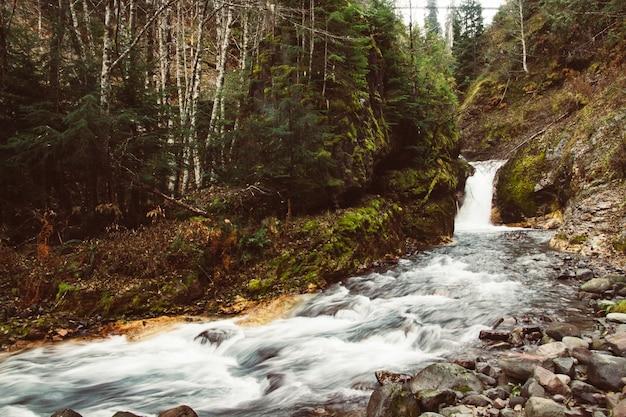 Pequeña cascada y un río con piedras mojadas.