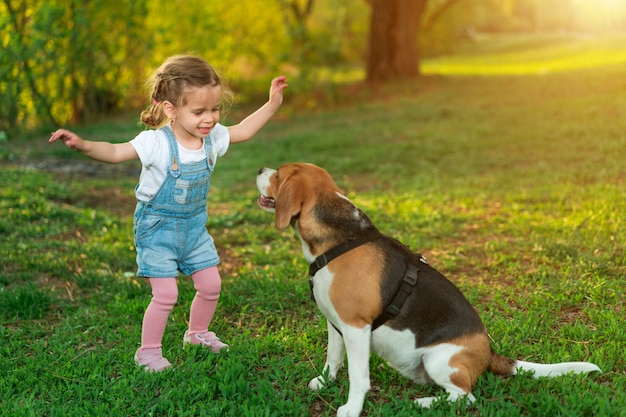 La pequeña muchacha caucásica camina con su perro en el verano en el parque en la naturaleza. raza beagle