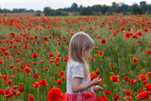 Pequeña muchacha rubia linda del niño en el vestido blanco y rojo en en el campo de la amapola en la puesta del sol