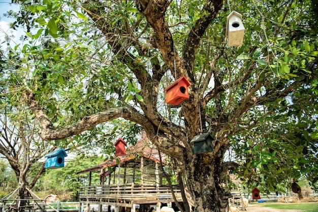 Pequeña pajarera en el árbol. pajarera de madera en el bosque de la granja y la primavera.