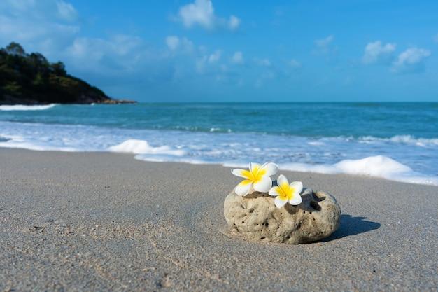 Una pequeña piedra de una forma suave e interesante es bañada por las olas en la playa. concepto de calma y relajación junto al mar