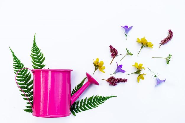 Una pequeña regadera rosa está decorada con flores silvestres y hierbas. el concepto de jardinería y ambiente campestre.