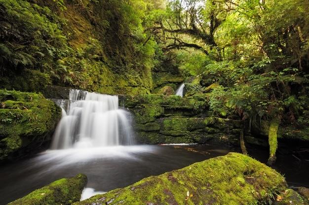 Pequeñas caídas río abajo de mclean falls, catlins, nueva zelanda