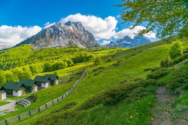 Pequeñas casas al pie de la montaña para pasar unas vacaciones en montenegro. komovi