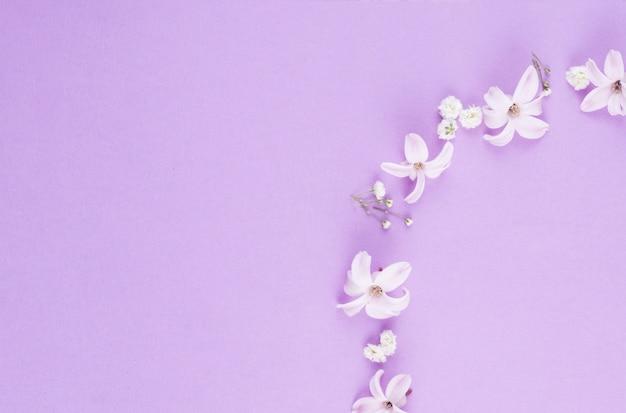 Pequeñas flores blancas esparcidas sobre mesa.
