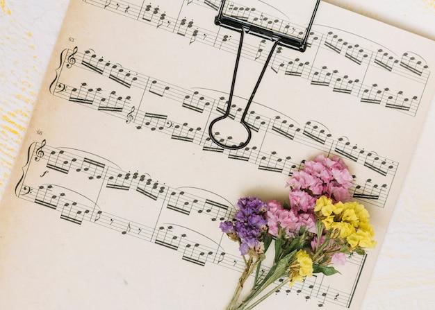 Pequeñas ramas de flores brillantes en la hoja de música