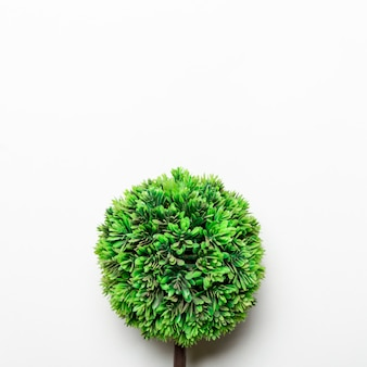 Pequeño árbol decorativo verde