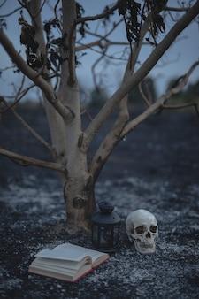 Pequeño árbol con libro de hechizos y calavera para la noche de halloween
