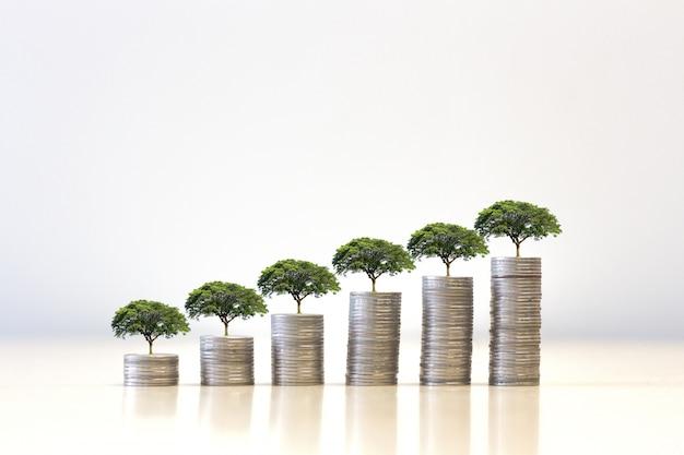 Pequeño árbol que crece en pila de monedas de dinero. ahorro de dinero. financiar el desarrollo sostenible.