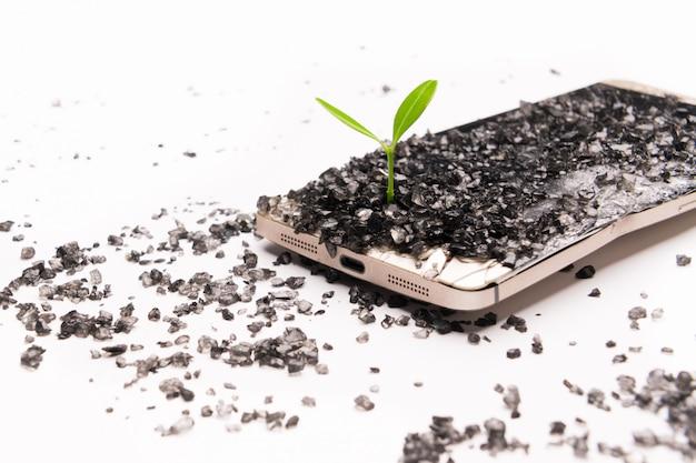 Pequeño árbol que crece en un teléfono inteligente roto, medio ambiente, conocimiento e innovación.