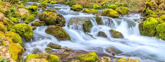 Un pequeño arroyo con una cascada y rocas cubiertas de musgo en primavera