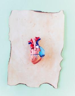 Pequeño corazón humano de plástico sobre papel viejo.