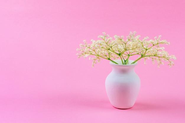 Un pequeño y delicado ramo de flores blancas de saúco en una jarra blanca sobre un rosa pastel.