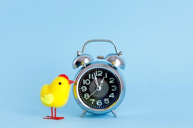 Pequeño despertador y pollo amarillo sobre azul pastel