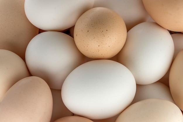 Pequeño grupo de huevos