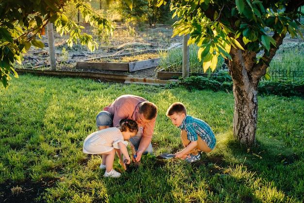 Pequeño hermano y hermana están plantando plántulas con su padre en un hermoso jardín de primavera al atardecer. nueva vida. salvar el medio ambiente. actitud cuidadosa hacia el mundo circundante y la naturaleza.