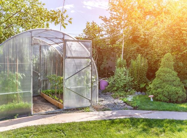 Pequeño invernadero arqueado en patio privado con destellos solares