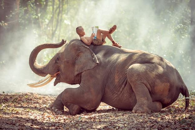 El pequeño muchacho rural tailandés estaba leyendo en elefante.