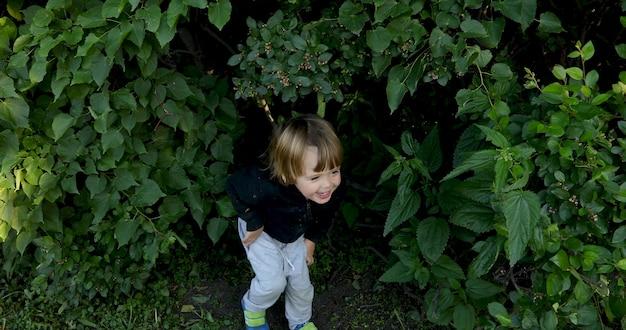 Pequeño niño moreno lindo que juega al escondite en un grupo de arbustos en la naturaleza y se agacha para reírse