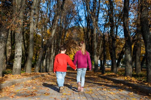 Pequeño niño y niña van de la mano en el parque de otoño. vista trasera